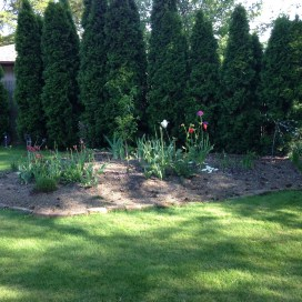 mothers day garden1
