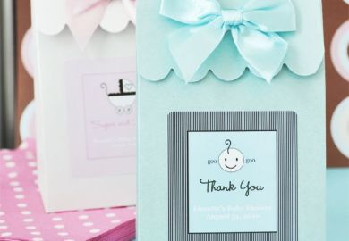 Baby Shower Favor Boxes And Bags