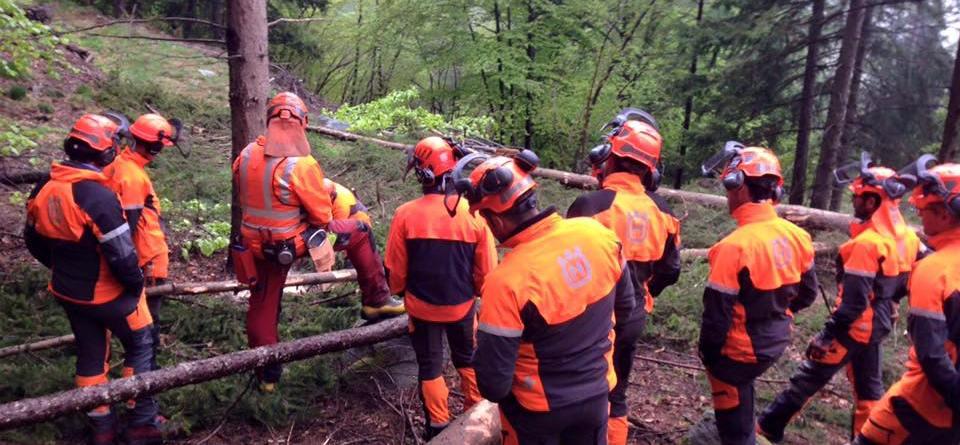 Tecniche avanzate di abbattimento alberi e gestione della motosega con Svante Hansson