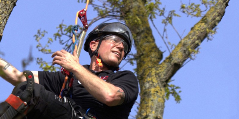 single rope technique tree climbing