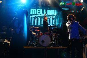 Mellow-Mood-live-Flog