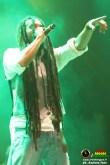 lion-d-campovolo-reggae-11