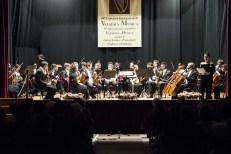 Orchestra Vivaldi