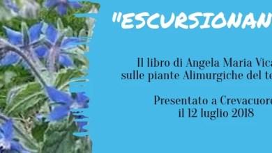 """Photo of Presentazione volume sulle piante """"Alimurgiche"""" – Crevacuore"""
