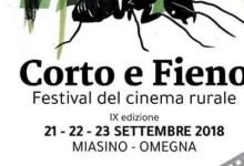 """Photo of """"Corto e Fieno"""" 2018 festival cinema rurale"""