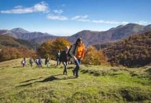 Photo of Oasi Zegna: 13-14 ottobre tra natura, sport e cultura