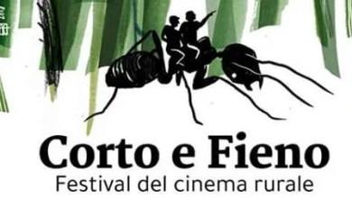 """Photo of Cameri (NO): """"Corto e Fieno"""" al Parco"""