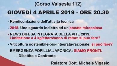 Photo of Gattinara: incontro tecnico sulla viticoltura
