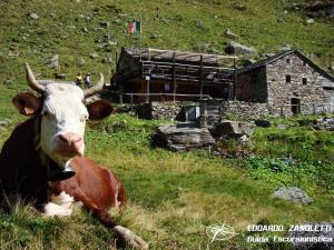 Rifugio Crespi Calderini. Escursione sul sentiero glaciologico