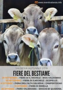 Fiere del bestiame autunno 2019 Valsesia