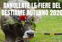 Photo of Valsesia: annullate le fiere autunnali del bestiame