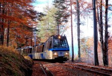 Photo of Val Vigezzo: torna la magia del treno del foliage