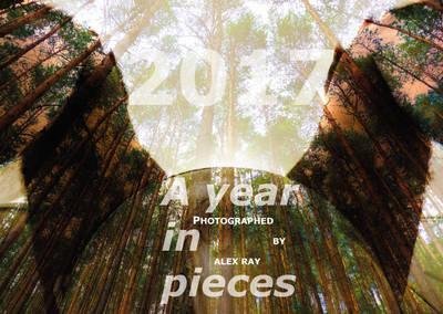 Vernissage Fotoausstellung /ALEX RAY. A YEAR IN PIECES