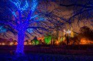 Christmas Garden,Berlin,Botanischen Garten,#Berlin,#VisitBerlin,Freizeit,Unterhaltung,Kultur,Event