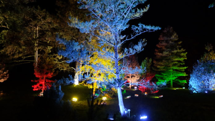 Christmas Garden,Berlin,#VisitBerlib,Kultur Medien,Freizeit,Unterhaltung,#EventNews,#VisitBerlin