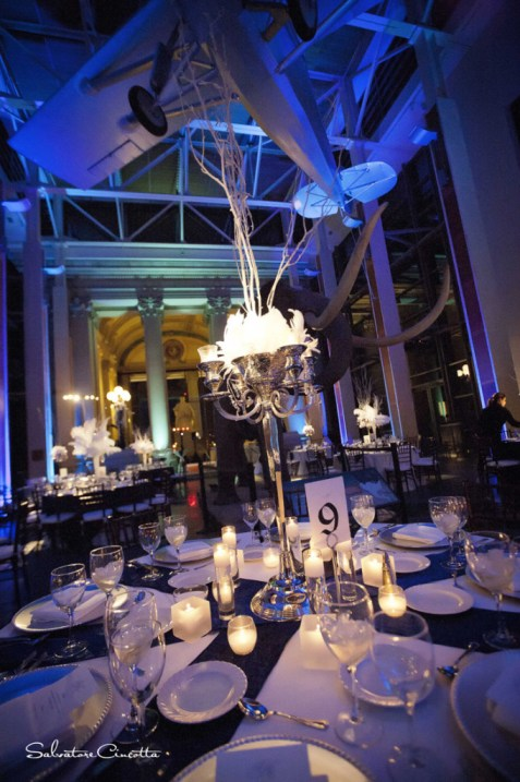 Wedding reception table with feather and twig centerpieces-overhead airplane-mastodon tusks