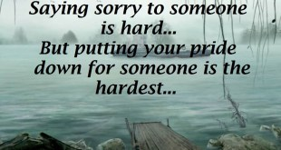 image for sorry quotes