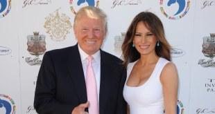 Donald Trump Wife image