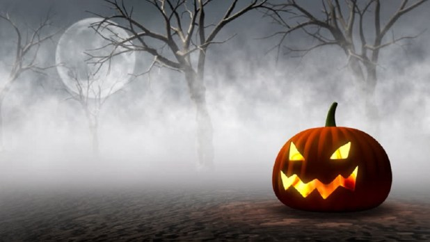 halloween wallpapers  backgrounds  u0026 hd images free download