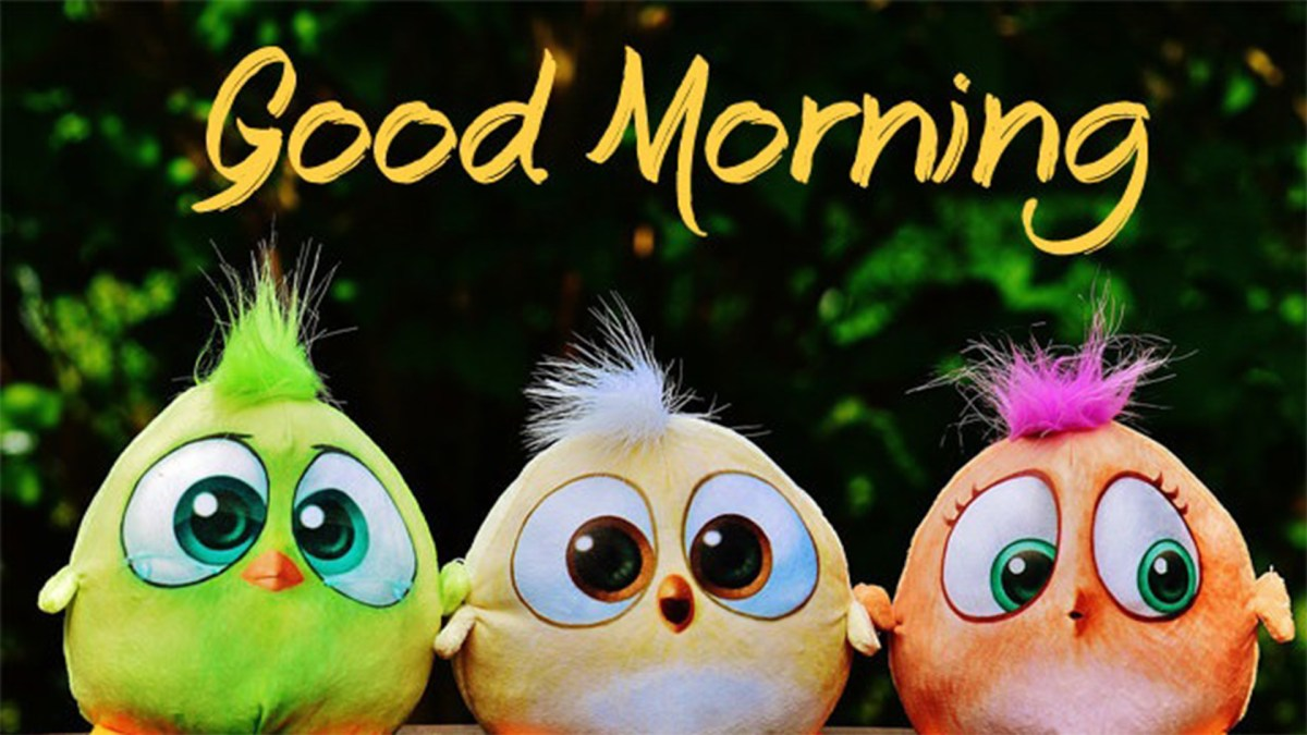 Good Morning Images HD Pictures | Good morning wishes