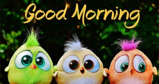 good morning picture hd 2018