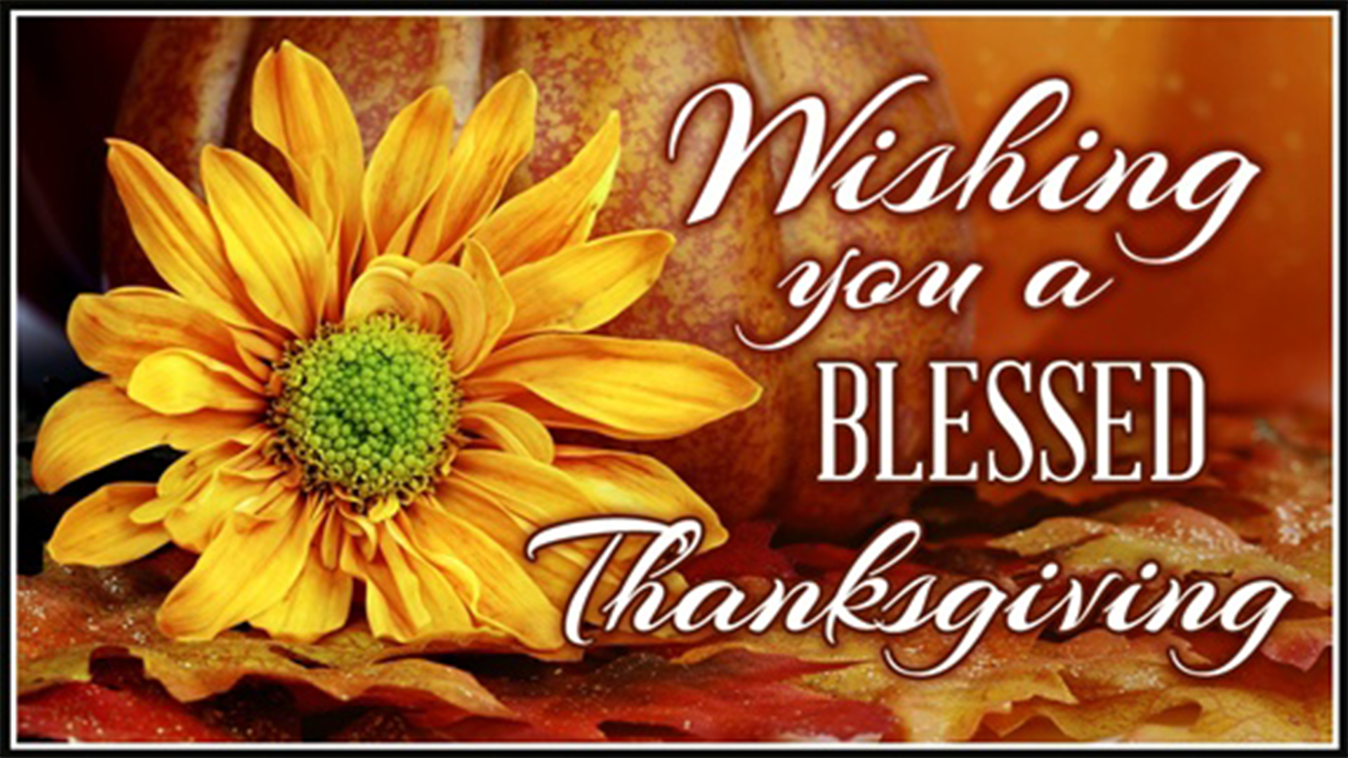 Happy thanksgiving pictures hd images 2017 thanksgiving greetings kristyandbryce Choice Image
