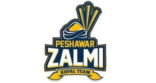 New Zalmi Logo 2018