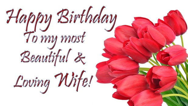 birthday card for wife happy birthday to my