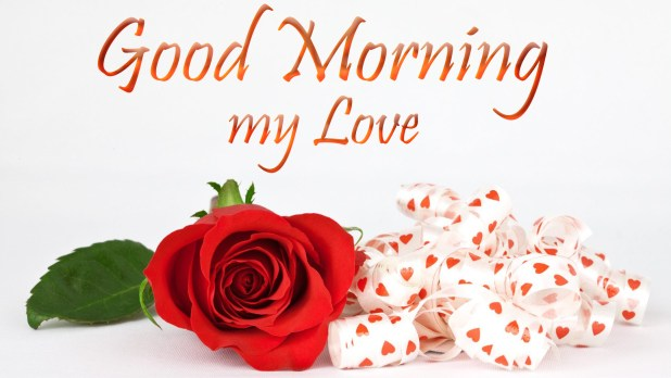 Good Morning My Love Images Hd Pictures Morning Wishes