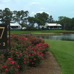17th Green at TPC Sawgrass (tags: Verizon, #PGA Tour)