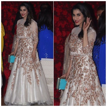 Sophie Choudry at Ambani star studded bash