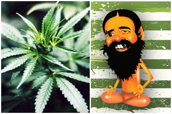 Why Baba Ramdev's Patanjali Wants Marijuana To Be Legalised In India? Read On!