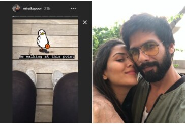 Mira Rajput Shares Picture Of Her Pregnancy Walk; It Will Tickle Every Woman's Funny Bone!