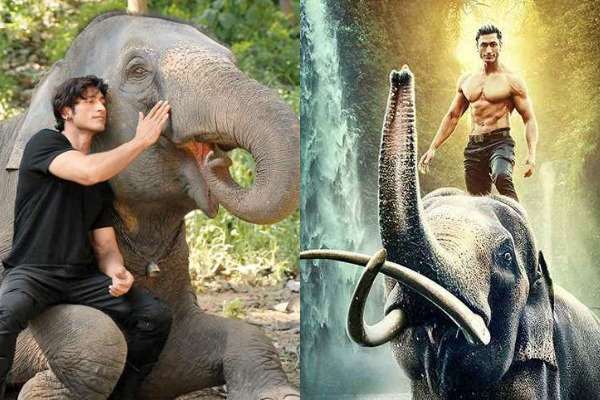 Junglee Review{1.5/5}: Vidyut Jammwal's Film With An Environment-Friendly Message Is Quite A Let Down