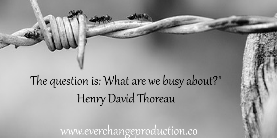 """Need some Monday Motivation to start your week off? Just remember: """"It is not enough to be busy; so are the ants. The question is: What are we busy about?"""" Henry David Thoreau"""