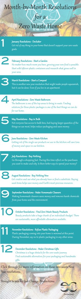 It's time to reflect on the past year and think about the future and come up with New Year resolutions. See these month by month resolution for inspiration!