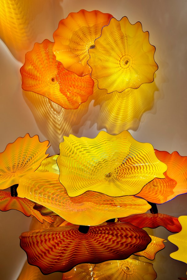 Dale Chihuly In Light Everett Potter' Travel Report