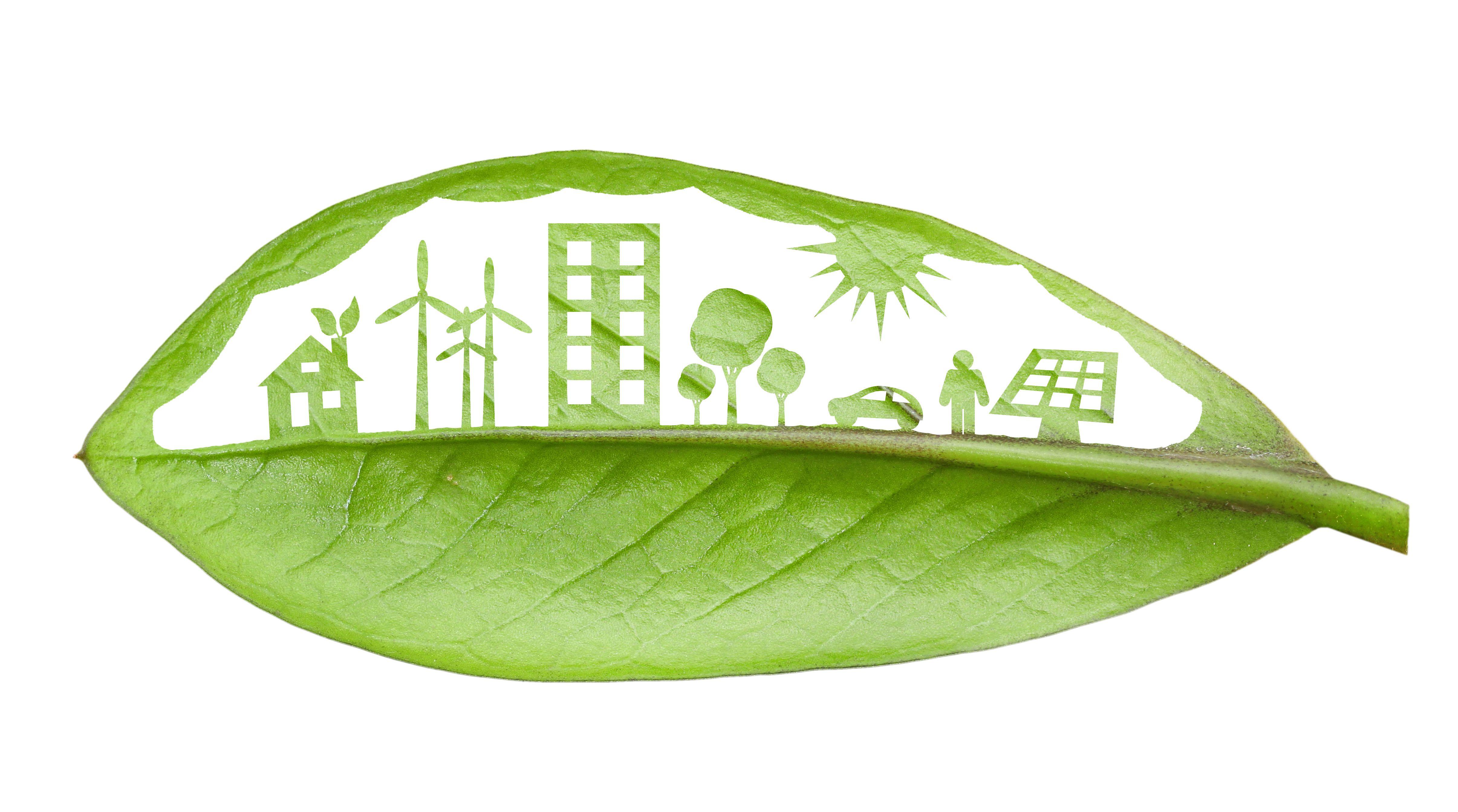 10 Stunning Renewable Energy Facts