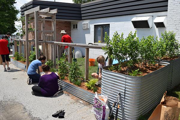 Design Your Own Garden Program