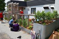Filed under: Gardening , Photo Galleries , Sustainable ...