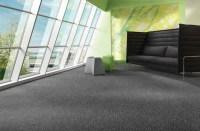 Eco-Friendly Carpet Maintenance - Evergreen Carpet Care