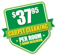 Evergreen Carpet Care | Carpet Cleaning | Reno, Sparks ...