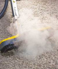 Carpet Cleaners Reno | Evergreen Carpet Care