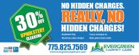 Evergreen Carpet Care | Taraba Home Review