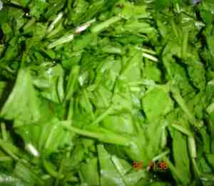 spinach washed and cut