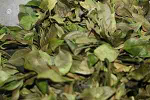roasted curry leaves