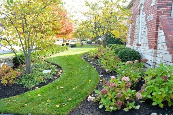 home - evergreen landscape