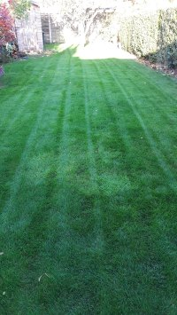 Gallery of Work | Evergreen Lawns & Gardens