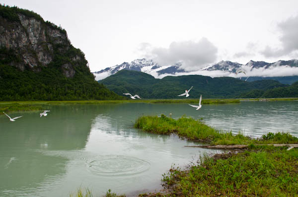 Near Wolverine Creek, Alaska