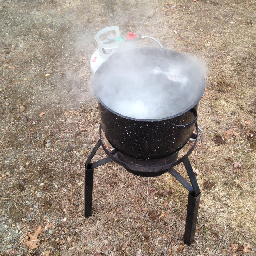 Cooking down the sap.